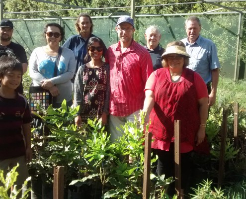Macadamia field days for new growers - Torere Macadamias